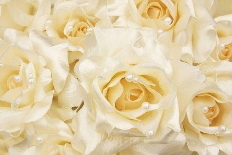 Обои с розами фото