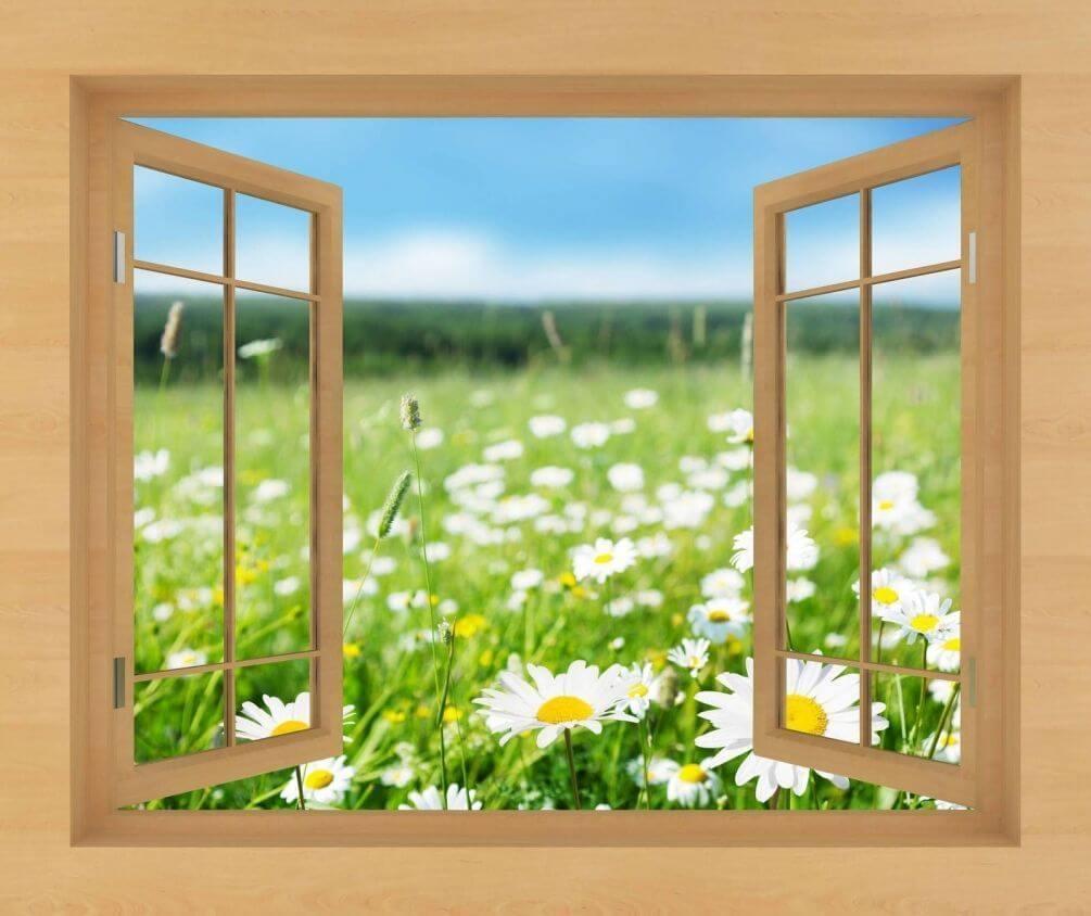 Скопировать окно в картинках