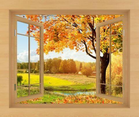 Главная фотообои вид из окна