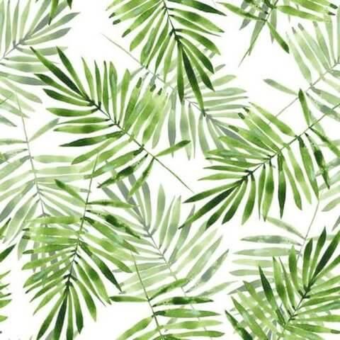 Пышные листья